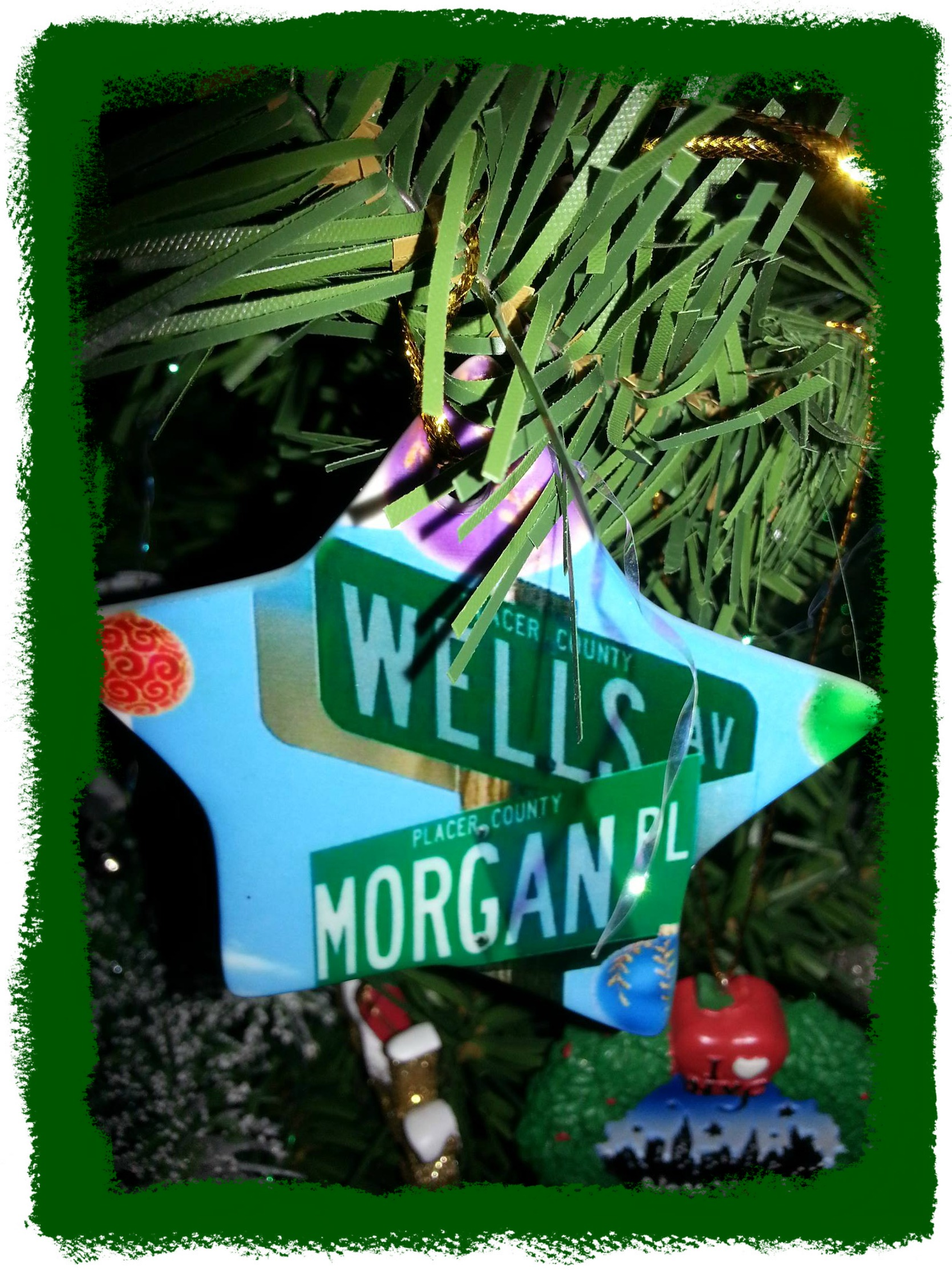 Street signs at crossroads, one sign Morgan & the other Wells