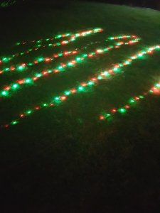 Twinkling lights taken down and they are working away, lit up on the grass