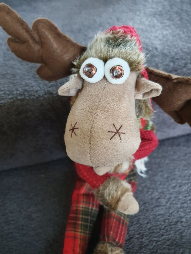 Soft toy moose with eyes made from buttons